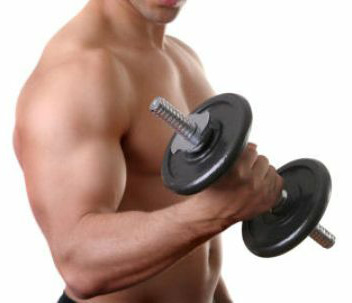 bodybuilding-weights-supplements